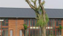 Village Liégeois: taille, élagage abattage d'arbre