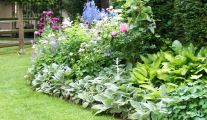 Les Plantes Vivaces Pépinière Garden-Abeels à Liège