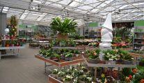 Jardinerie Groendekor Leeuw Saint Pierre