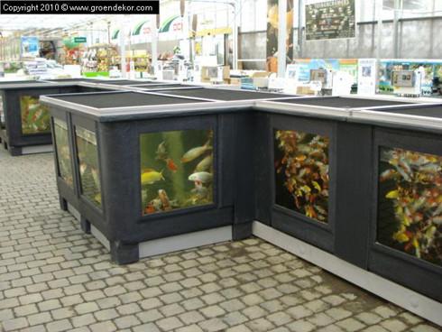 Amenagement bassin poissons ext rieur - Amenagement bassin poisson exterieur argenteuil ...