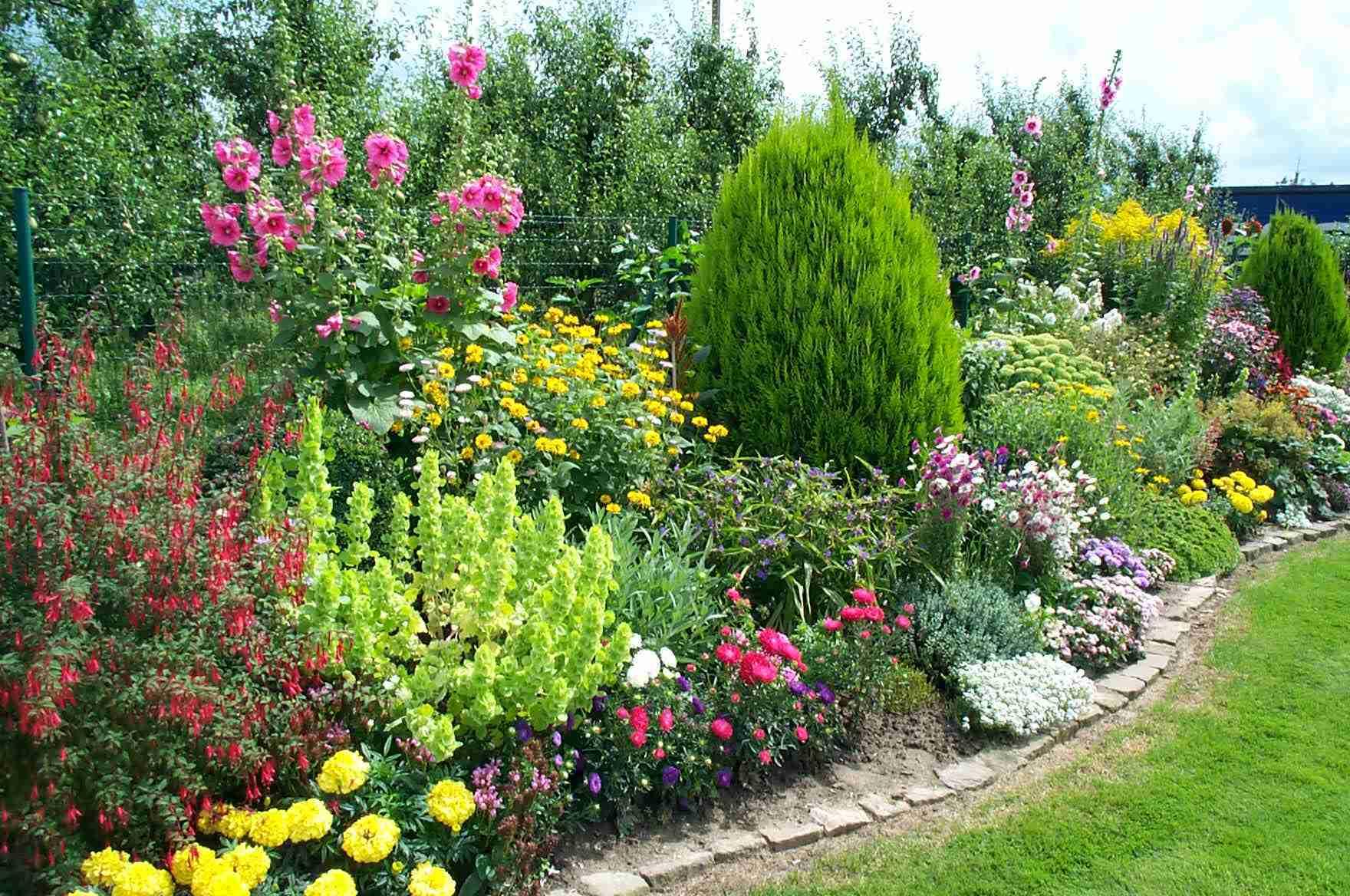 Plantes vivaces chez jardiland lange goz e for Jardin plantes vivaces