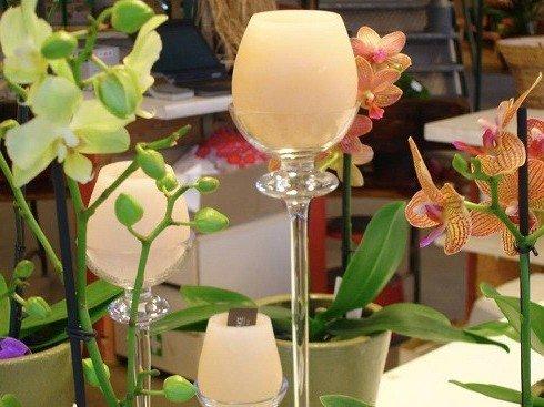 Jardinerie p pini re ottignies louvain la neuve chaumont gistoux - Decoration jardin ottignies ...