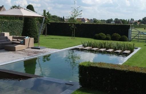La piscine naturelle tang de nage d 39 aqua passion for Piscine ecologique