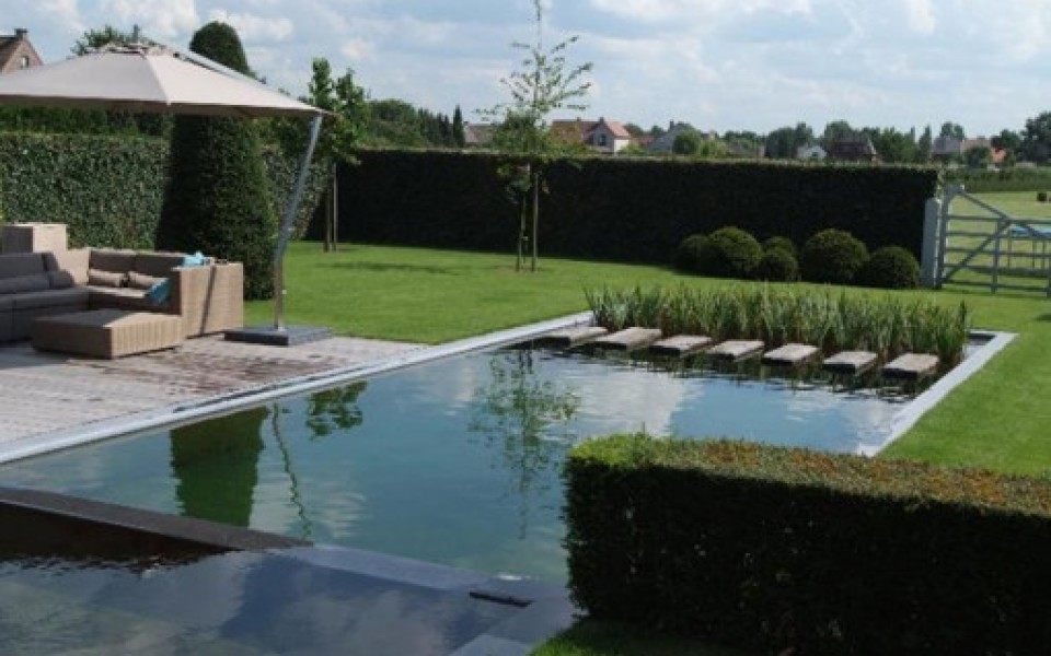 La piscine naturelle tang de nage d 39 aqua passion for Piscine integree dans terrasse