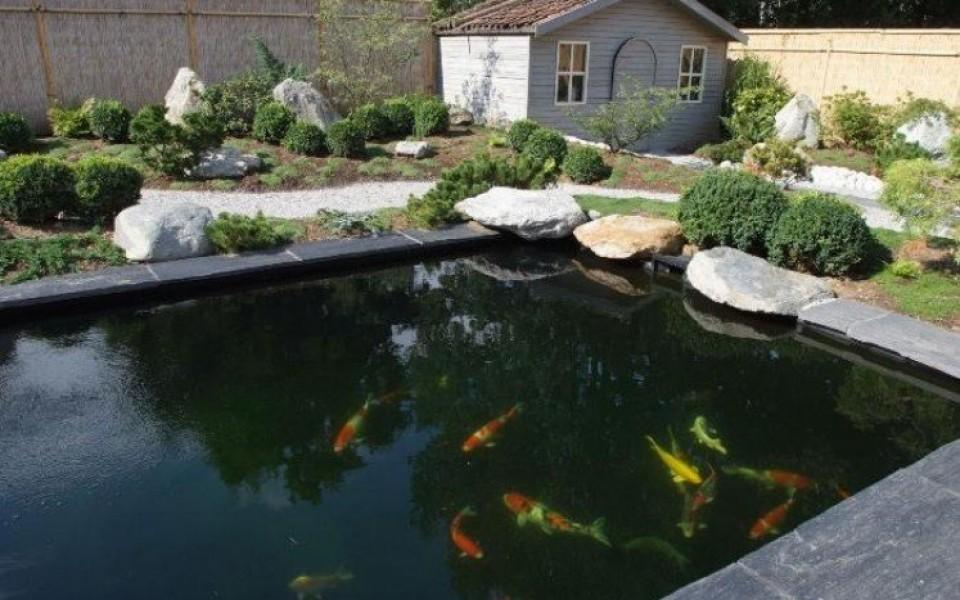 Projet de gomick forum bassin - Bassin aquatique contemporain calais ...