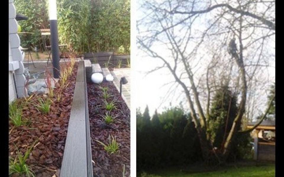 Am nagement entretien de jardins abattage lagage for Entretien de jardins