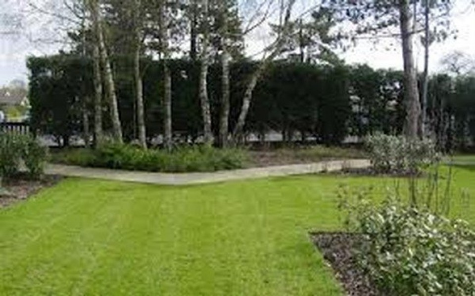 Entretien jardin wavre rixensart uccle for Contrat entretien jardin