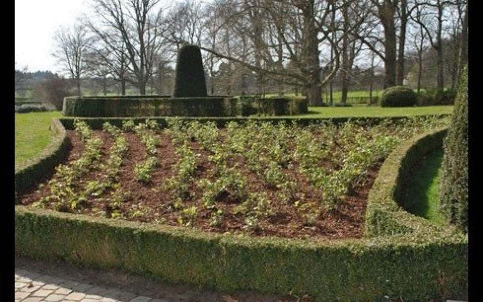 Entretien jardin wavre rixensart uccle for Entretien jardin wasquehal