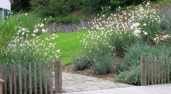 Henrion jardins amenagement entretien jardin ohain for Entretien jardin 02