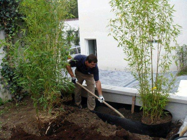 Am nagement et cr ation de jardin bruxelles waterloo lasne for Entretien jardin bruxelles