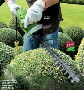 Conseils pour entretien de hortensias taille namur brico for Prix entretien jardin