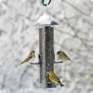 Nichoir pour oiseaux des jardins vivara - Pour effrayer les oiseaux ...