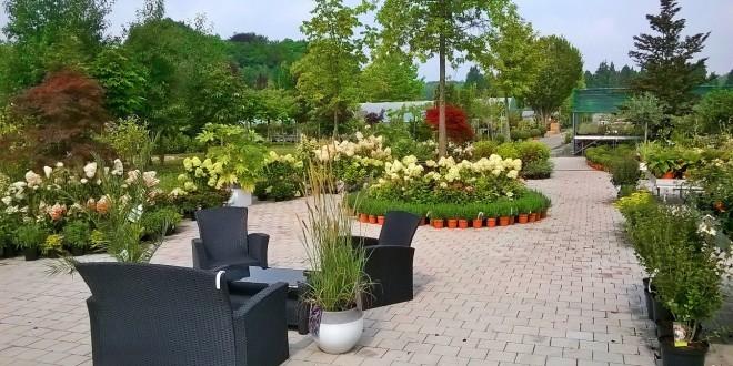 Meuble de jardin waterloo meilleures id es cr atives pour la conception de la maison - Deco jardin chaussee de waterloo tours ...
