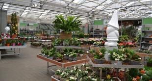 Jardinerie Groendekor Uccle