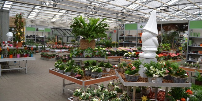 Jardinerie groendekor uccle for Jardinerie des jardins