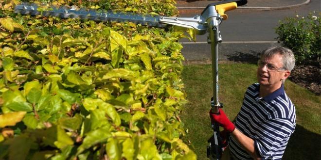 Abris de jardin prix jardin et decoration amenagement for Entretien de jardin prix