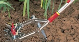 Jardin et decoration amenagement et entretien belgique for Entretien materiel jardinage