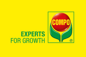 experts for growth