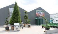 Garden Abeels, Jardinerie, Jardinier, Plantes, Fleurs, Waremme, Remicourt, Liège
