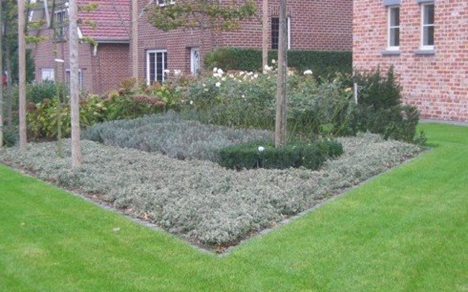 aménagement, entretien jardins par wavre gardens
