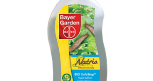 Insecticide contre les Pucerons, Anti Pucerons Jardin Potager, Bayer
