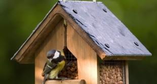 nichoir oiseaux Vivara